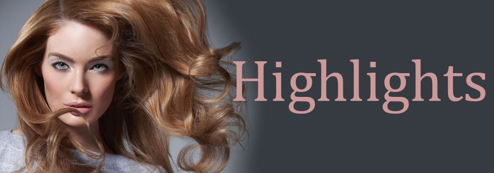 Highlights Gore hair salon Irmo Columbia SC