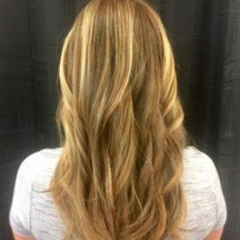 Hair Color Salon Irmo Columbia Sc Highlights Lowlights