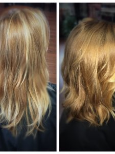 blonde correction Gore by Lauren